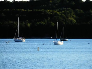 Pine Grove Resort - Sail Boats